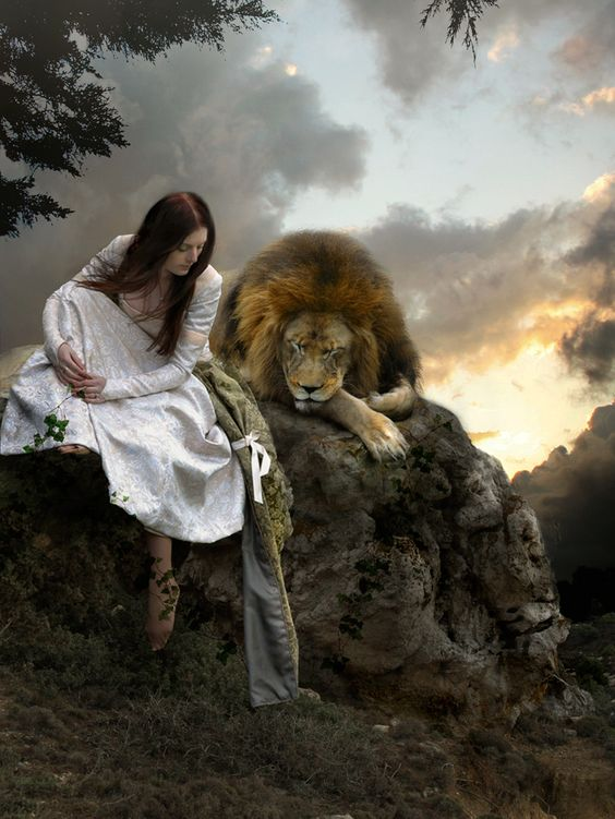 waiting with a lion